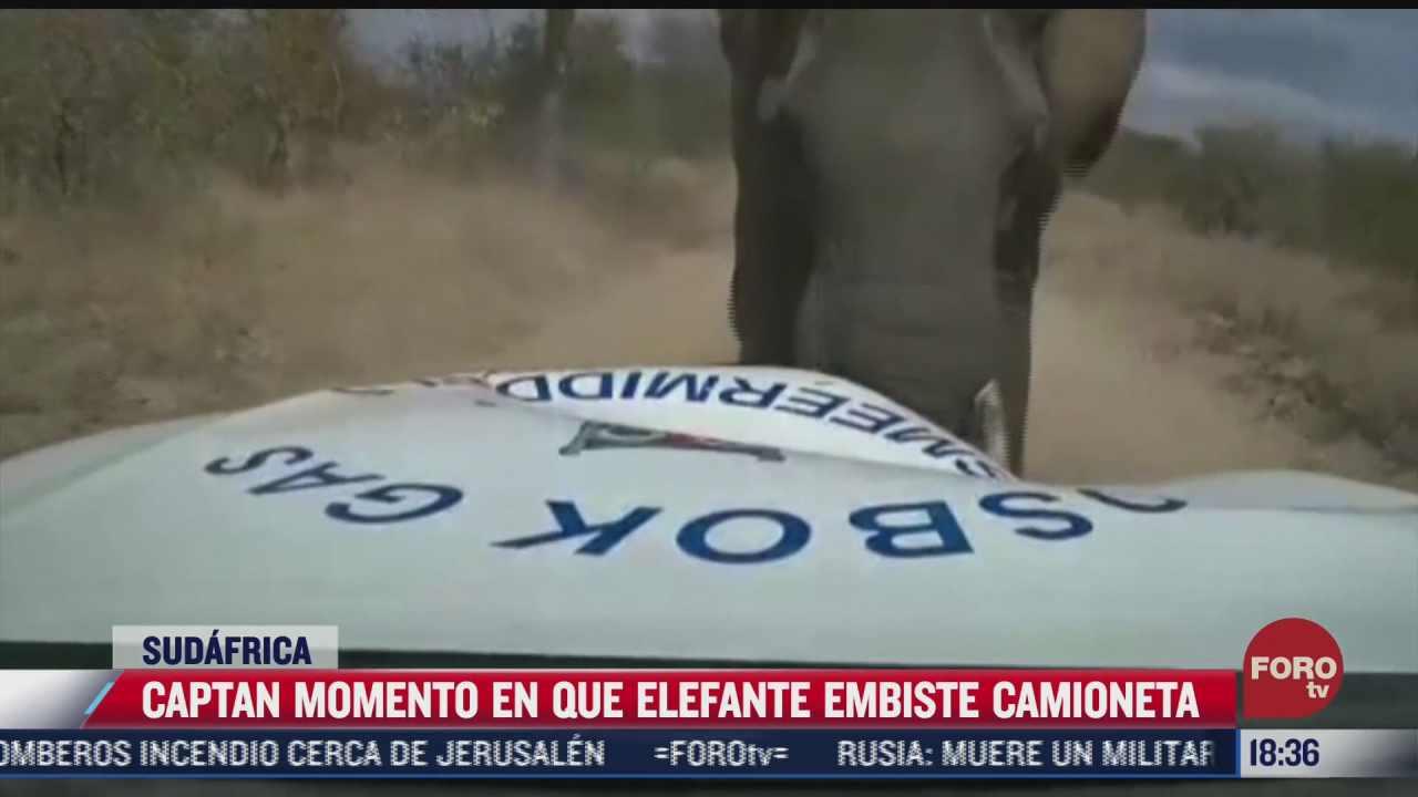 captan momento en que elefante embiste a camioneta en sudafrica