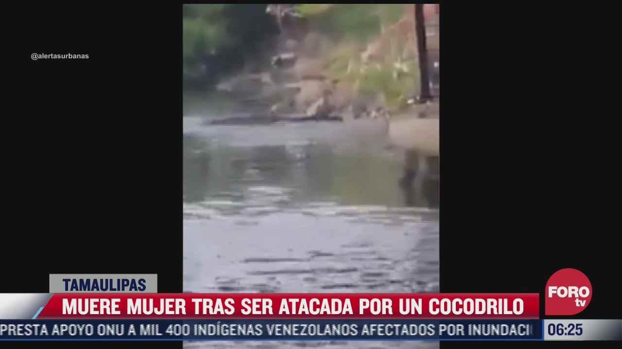 cocodrilo mata a mujer que lavaba ropa en un rio