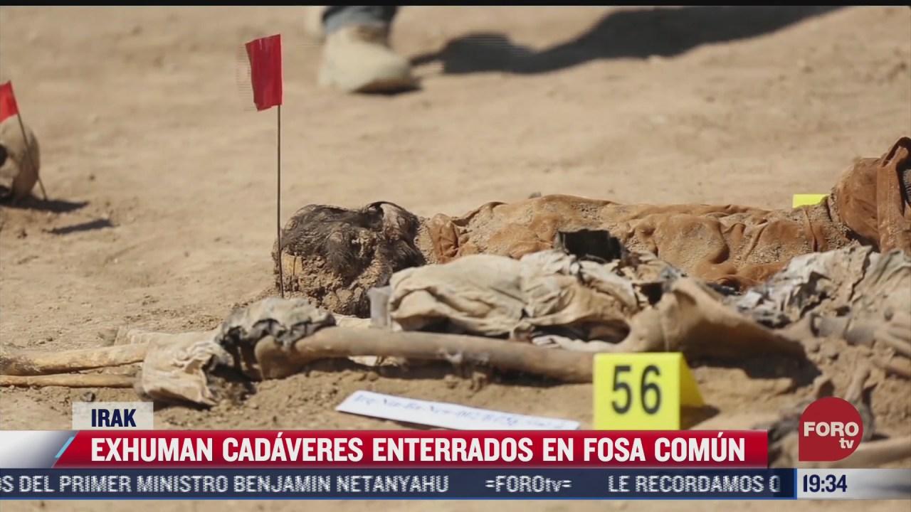 exhuman varios cadaveres de fosas comunes en irak