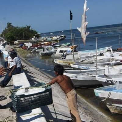 México da inicio a la temporada de pesca tras fin de la veda