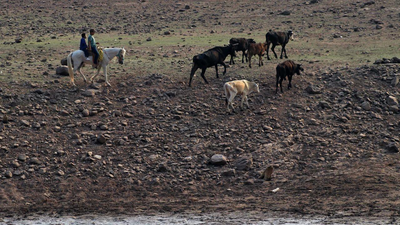 ¿Qué es celda de Hadley, el fenómeno que provoca sequía en México?
