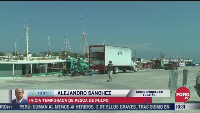 inicia temporada de pesca de pulpo en yucatan