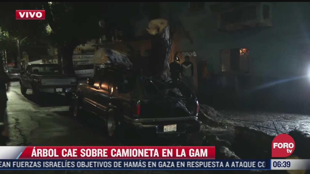 arbol cae sobre camioneta en calles de la alcaldia gustavo a madero cdmx