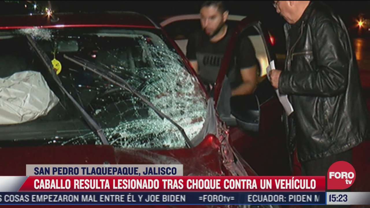 caballo resulta lesionado tras choque contra vehiculo en jalisco