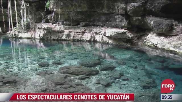 los espectaculares cenotes en yucatan