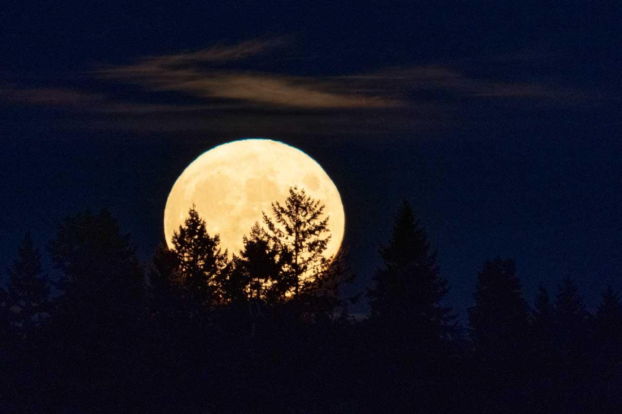 Luna de Cosecha Washington 2021
