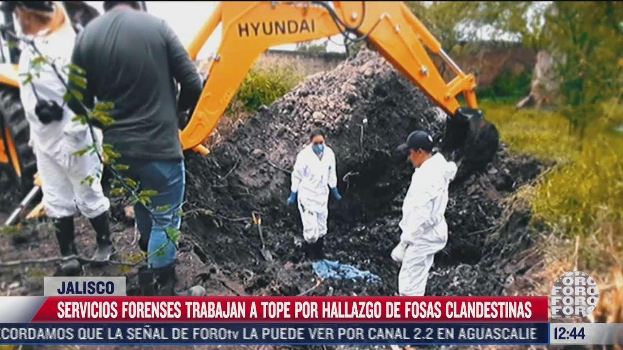 servicios forenses trabajan a tope por hallazgo de fosas clandestinas en jalisco
