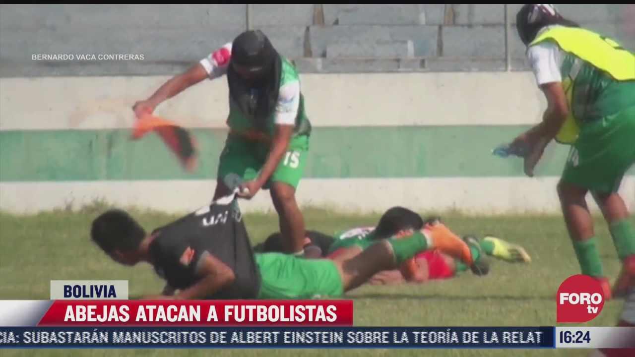 video abejas atacan a futbolistas en bolivia