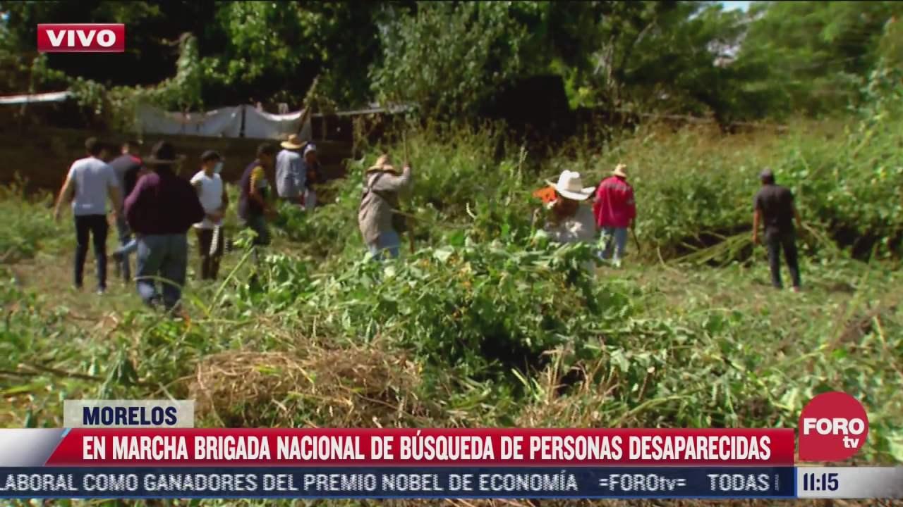 en marcha brigada nacional de busqueda de personas desaparecidas en morelos