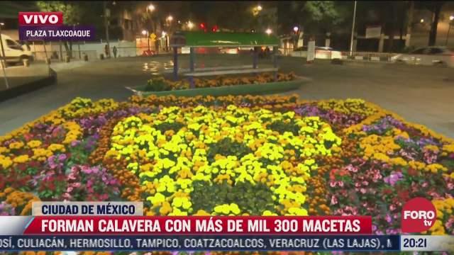 forman calavera con mas de mil 300 macetas de cempasuchil en plaza tlaxcoaque