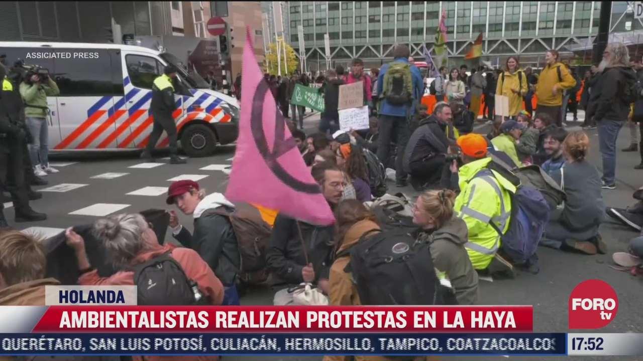 grupo ambientalista realiza manifestacion en la haya paises bajos