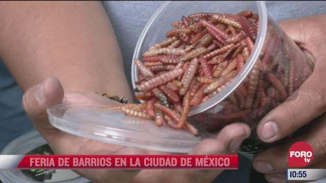 la feria de barrios en la ciudad de mexico