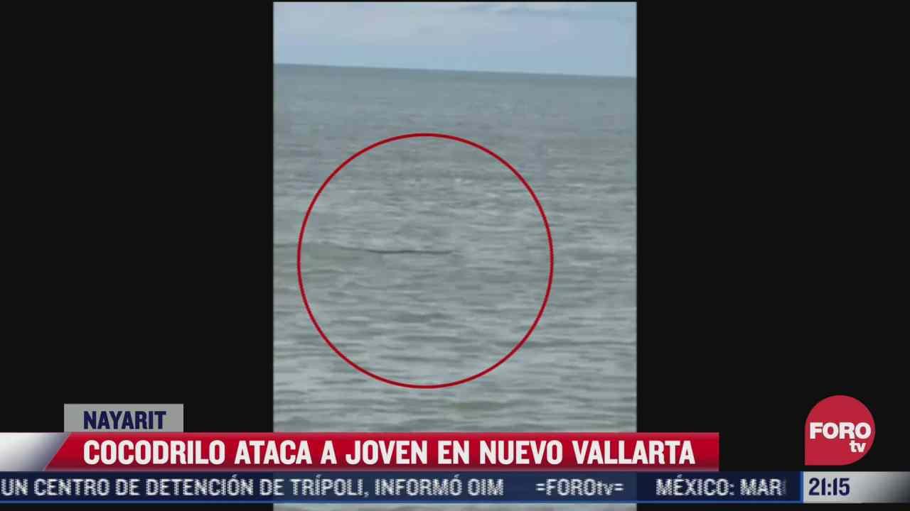 turista sobrevive tras ser atacado por cocodrilo en playa de nuevo vallarta