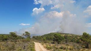 incendi forestal beneixema