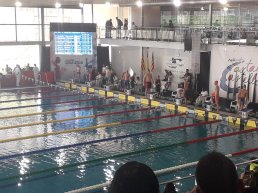 segon dia campionat natacio1