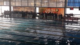 segon dia campionat natacio2