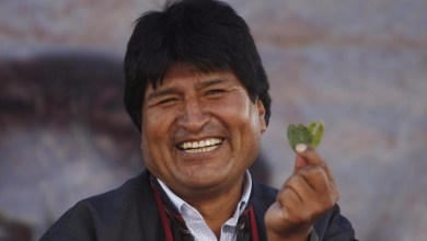 Photo of El Tribunal Constitucional permite a Evo Morales presentarse para un cuarto mandato