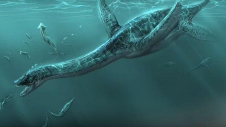 Photo of Encuentran fósiles de un dinosaurio marino