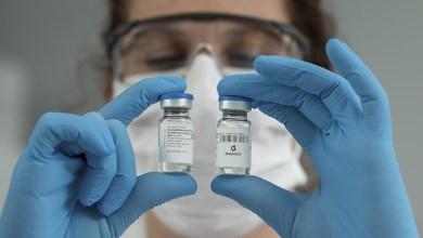 Photo of Investigadores argentinos neutralizan el coronavirus en laboratorio con suero de caballo