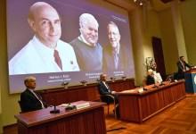Photo of Nobel de Medicina por el descubrimiento de otro virus mundial
