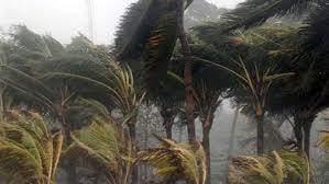 Fuertes vientos se registran en la ciudad de León