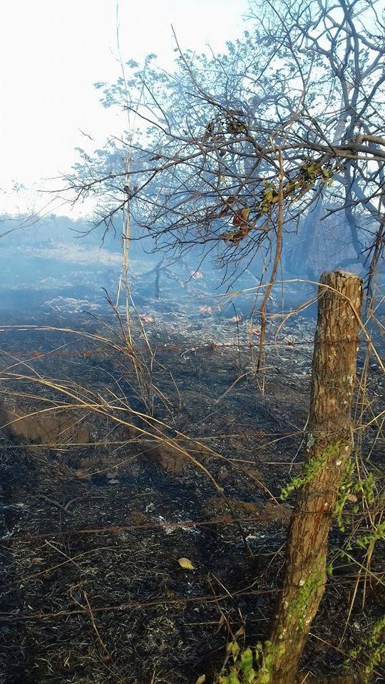 Incendio de maleza en Finca San Roque carretera León-Poneloya.