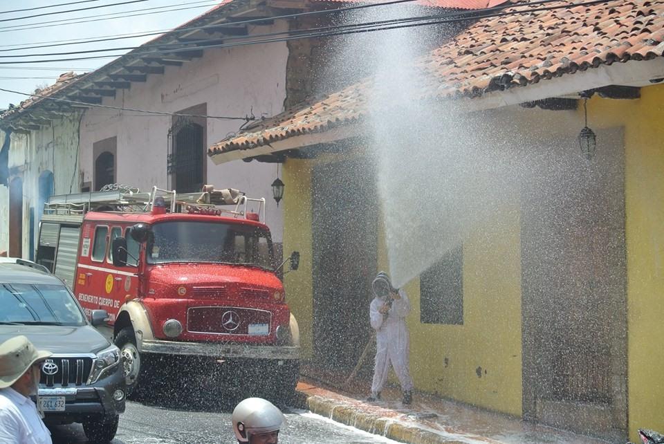 Bomberos voluntarios exterminan enjambre de abejas africanizadas en León