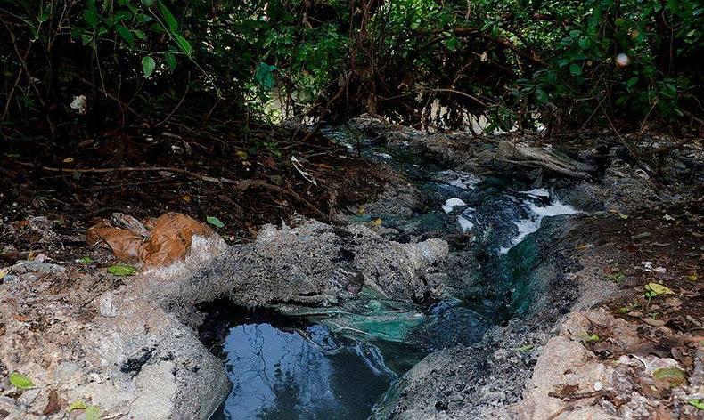 Tragedia ambiental en el Rio Chiquito de la ciudad de León