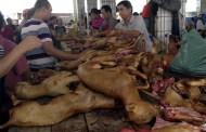 Comienza polémico festival de carne de perro en China
