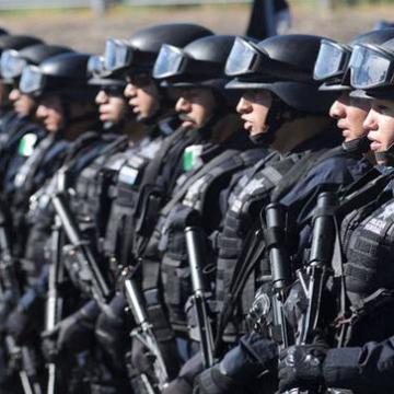 PF podría entrar a combatir narcomenudeo en la UNAM, si lo piden: Sales