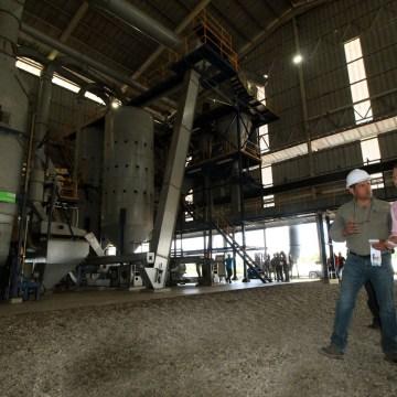 Velasco impulsa producción de aceite de palma en Chiapas