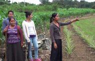 Conmemoran el Día Internacional de la Mujer Rural