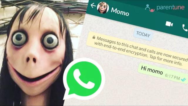 Momo challenge causa pánico en ciudadanía (AUDIO)