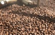 Estudiantes universitarios crean bioplástico a base de residuos del café