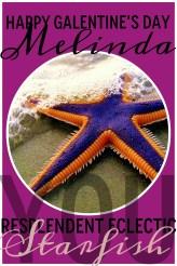 MELINDA, you resplendent eclectic starfish