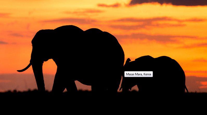 Masai Mara, el ocaso en territorio africano