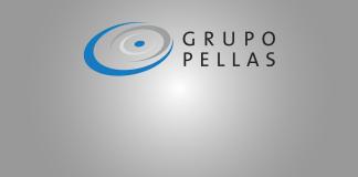 Grupo Pellas
