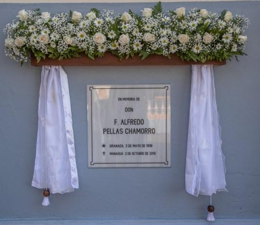 Alfredo Pellas Chamorro