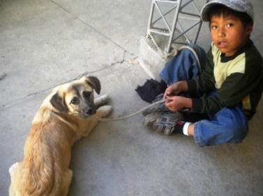 La mascota y su dueño, esperando