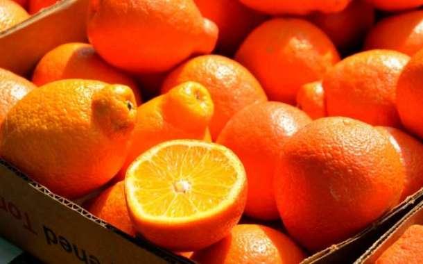Aprende a preparar tu propia vitamina C en casa