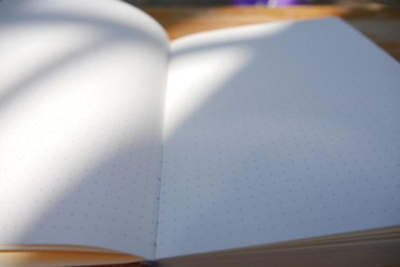 Lemome Notizbuch dotted punktiert