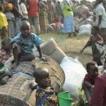 La grande fuga dal Congo