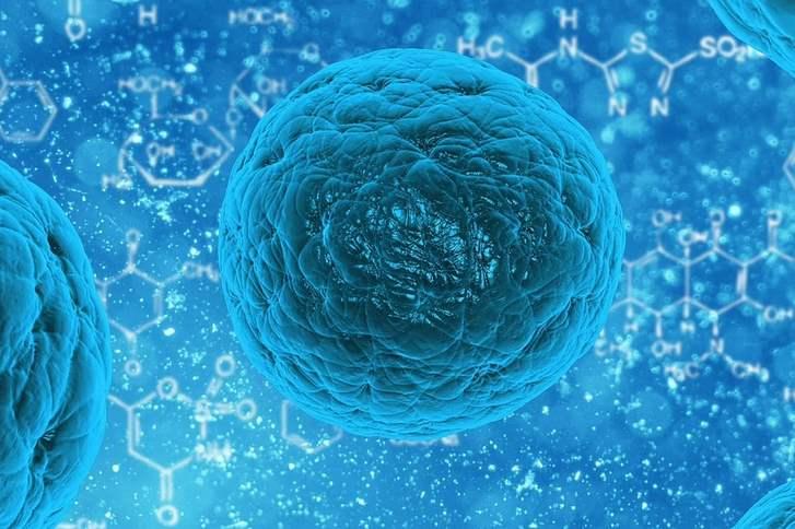 Scienziati stanno creando arca di Noè dei batteri del nostro corpo