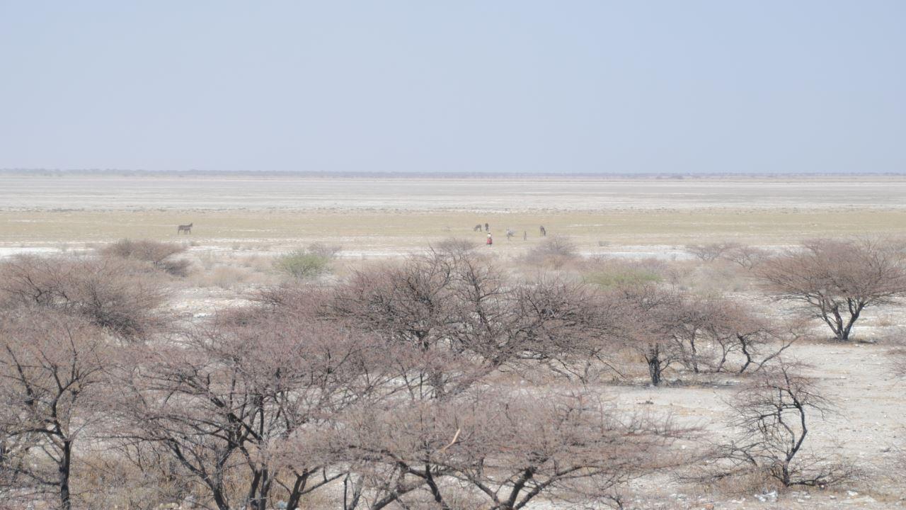Scoperta la prima casa dell'Homo Sapiens: era in Africa meridionale