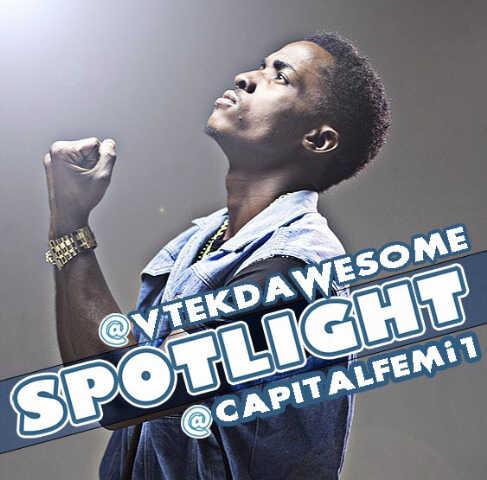 vtek spotlight