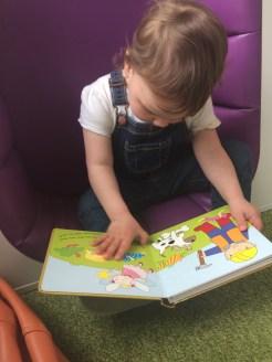 Phoebe's favourite reading spot