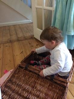 A Phoebe picnic