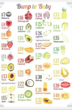All important fruit sizes