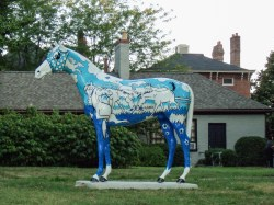 horse-in-park