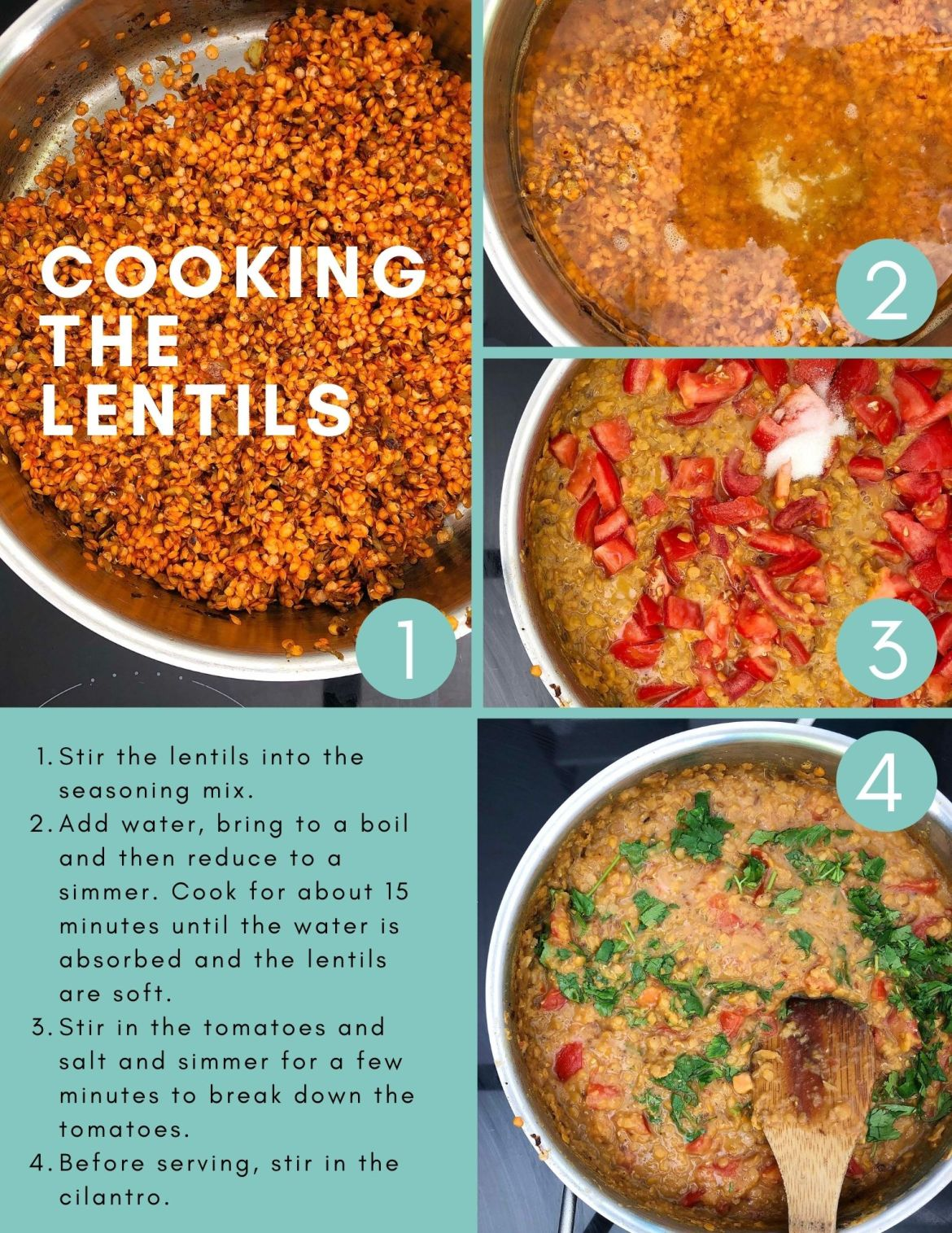 Infographic titled: Cooking the Lentils. Image #1 shows the lentils in a frying pan, added to the seasoning mix. Text reads: Stir the lentils into the seasoning mix. Image #2 shows water added to the lentils in the frying pan. Text reads: Add water, bring to a boil and then reduce to a simmer. Cook for about 15 minutes or until all the water is absorbed and the lentils are soft. Image #3 shows the tomatoes and salt added to the cooked lentils. Text reads: Stir in the tomatoes and salt and simmer for a few minutes to break down the tomatoes. Image #4 shows cilantro stirred into the lentils with a wooden spoon. Text reads: Before serving, stir in the cilantro.